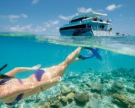 Great Barrier Reef Holidays Packages