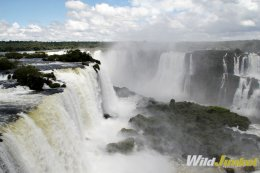 Watch the water from Iguazu River flow over the Paraná Plateau.